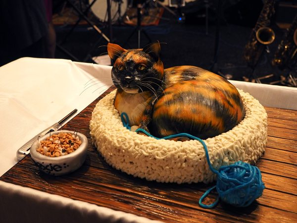 Rexie the cat as a 3D birthday cake.